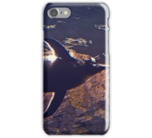 Penguin from Up High  iPhone Case/Skin