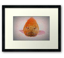 One Big Ugly Fish part 2 Framed Print