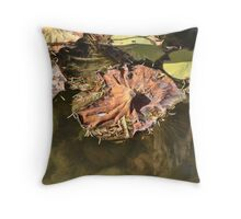 End of the Lily Pad Throw Pillow