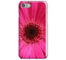 Pink Gerbera Daisy iPhone Case/Skin
