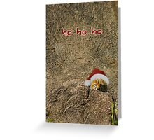Ho ho ho from a little cheetah Greeting Card