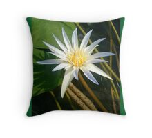 Simply Lily 3 Throw Pillow