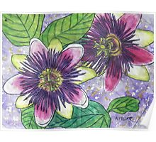 Passionflowers II Poster