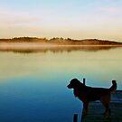 Misty by LadyFi
