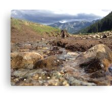 Flowing Creek Beneath the Mountains  Canvas Print