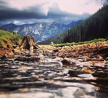 Creek Flowing Over River Rocks Beneath The Mountains by JULIENICOLEWEBB