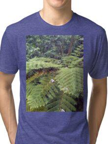 Giant fern Tri-blend T-Shirt