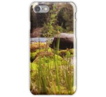 Tall Grass Beside the Riverbank iPhone Case/Skin