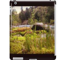 Tall Grass Beside the Riverbank iPad Case/Skin