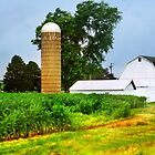 Silo and a Small White Barn by Nadya Johnson