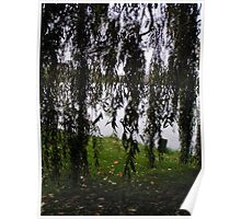 Big river, the weeping willow Poster