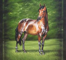 Equus Perfection by Heidi Schwandt Garner