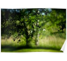 Green Summer -  Déjà vu . Brown Sugar Storybook .. Featured in Going Green. Poster