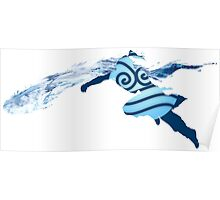 Legend of Korra - Southern Water Tribe Poster