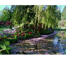 Butchart Gardens Lake in May Blossom Photographic Print