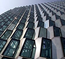 Windows of the Harpa by Marylou Badeaux