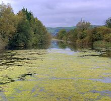 Ulverston Canal by Jamie  Green