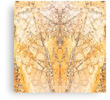 Stone slab design rocks Canvas Print