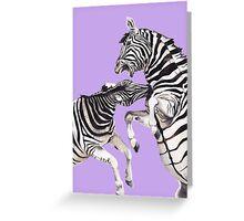 Zebra's Fighting Purple Greeting Card