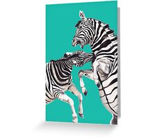 Zebra's Fighting Teal Greeting Card
