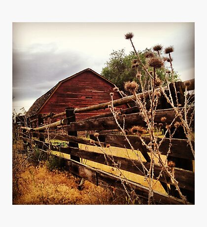 Weathered Fence Posts with Rustic Red Barn Photographic Print