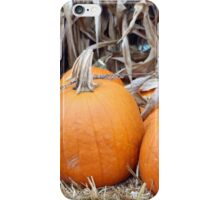 Orange pumpkins iPhone Case/Skin