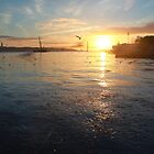 Sunset Tejo by fotomagia