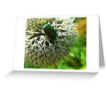 Scarab Green Greeting Card