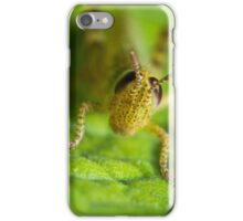 Little Cricket iPhone Case/Skin
