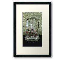 Snow Globe Bloosom trees Framed Print