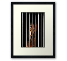 Arrested Soul Framed Print