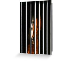 Arrested Soul Greeting Card
