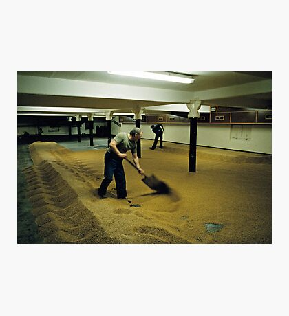 Maltsters turning malt in Langley Maltings, W. Midlands, 1980s Photographic Print