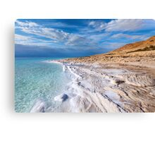 Salty Beach Products Canvas Print