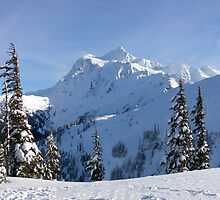 Mt. Shuksan in Winter by Barb White