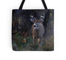 Buck - The light hits at the rut time of the day - White-tailed Deer Tote Bag