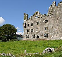 Irish Castle, County Clare, Ireland by upthebanner