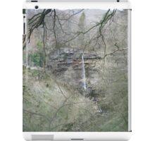 Waterfall Scene iPad Case/Skin