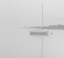 reflection in fog by nialloc