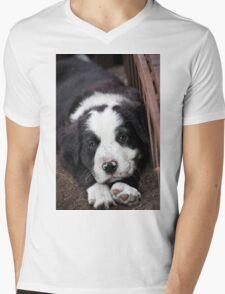 Sleeping Puppy Mens V-Neck T-Shirt