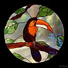 Art glass tucan..... by DaveHrusecky