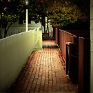 A Walk Way At Night by Roger Sampson