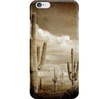Vintage style desert cacti photo iPhone Case/Skin