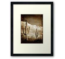 Vintage style desert cacti photo Framed Print