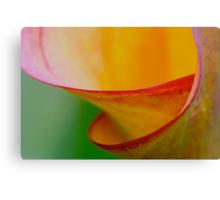 colour spiral Canvas Print