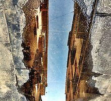 Looking through the puddle of life... by MikeShort