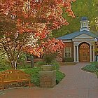 Fall at Furman by Gordon Taylor