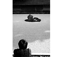 Zen Contemplation Photographic Print