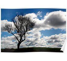 Silhouette Landscape Poster