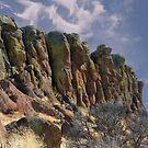 Sentinels by Arla M. Ruggles
